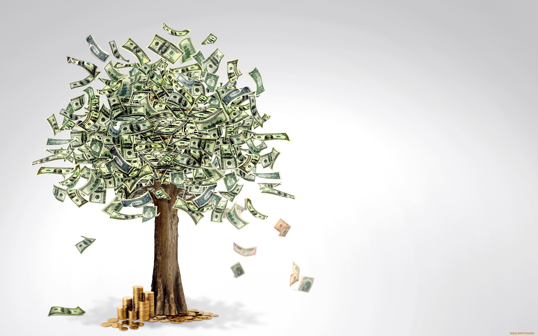 самом денежное дерево с купюрами поздравление большой кухней